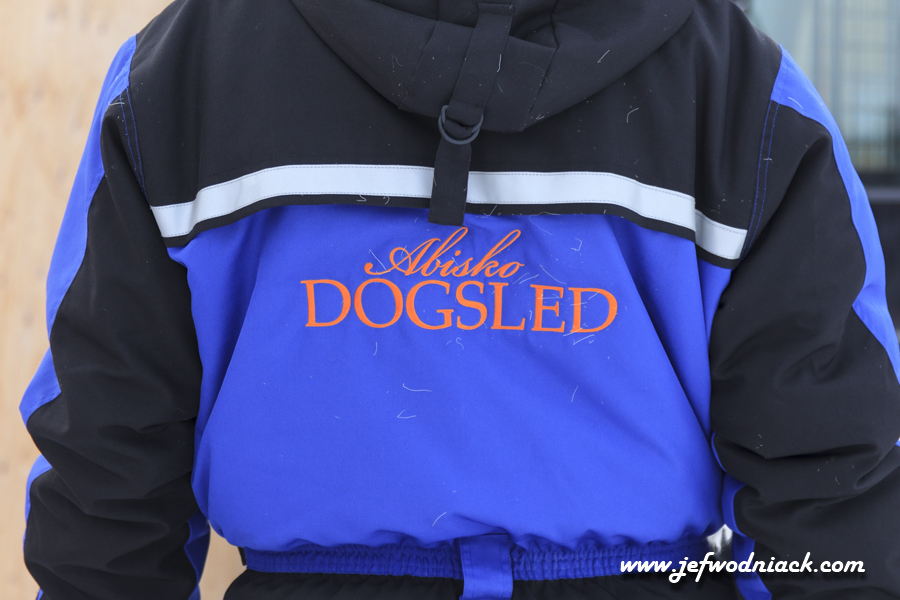 Abisko Dog Sled