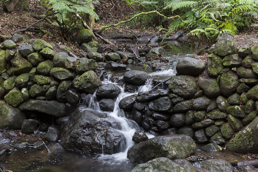 UUne cascade dans la forêt primaire de La Gomera